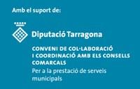 Banner Diputació Tgn