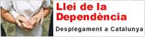 Llei de la Dependència